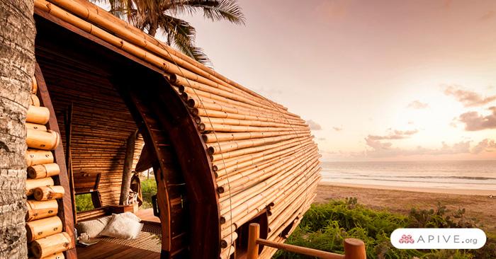 bambú-dentro-de-proyectos-de-arquitectura-sustentable